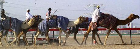 Child Camel Jockey